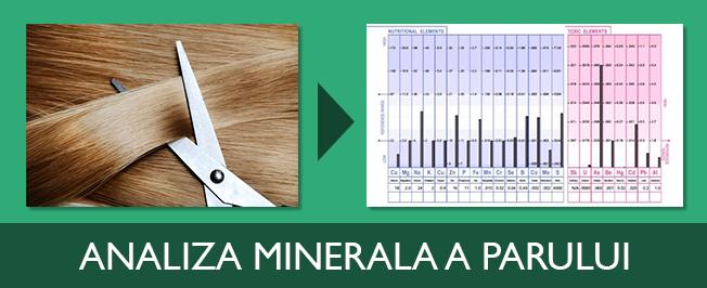 analiza minerala a parului